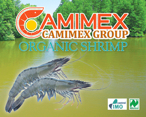 camimex_logo.png